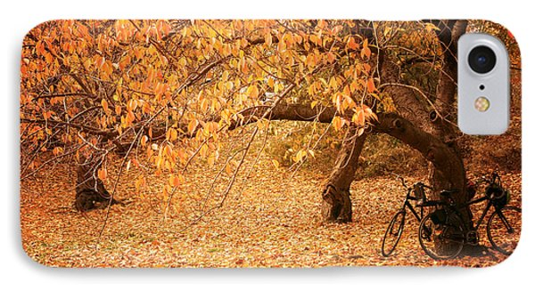 For Two - Autumn - Central Park IPhone Case