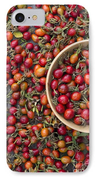 Foraged Rose Hips IPhone Case by Tim Gainey