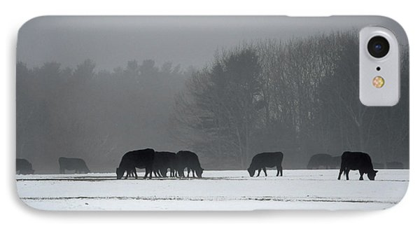 IPhone Case featuring the photograph Foraging by Glenn Gordon