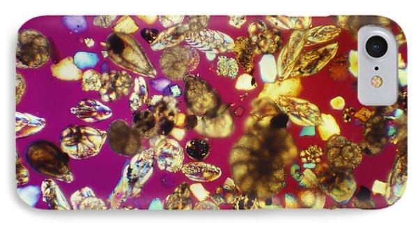 Foraminifera Lm Phone Case by Charles Gellis