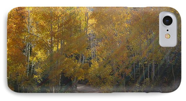 IPhone Case featuring the photograph Forest Bathing by Deborah Moen
