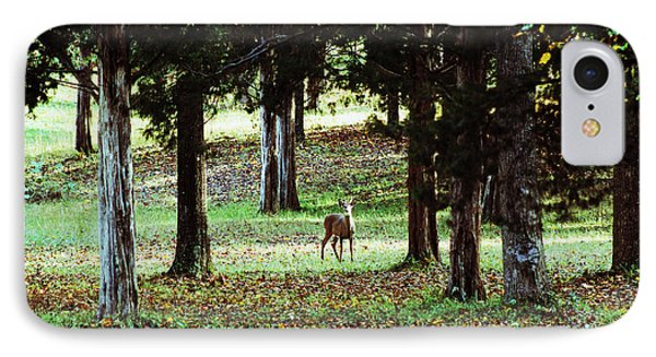 IPhone Case featuring the digital art Forest Buck by Lorna Rogers Photography