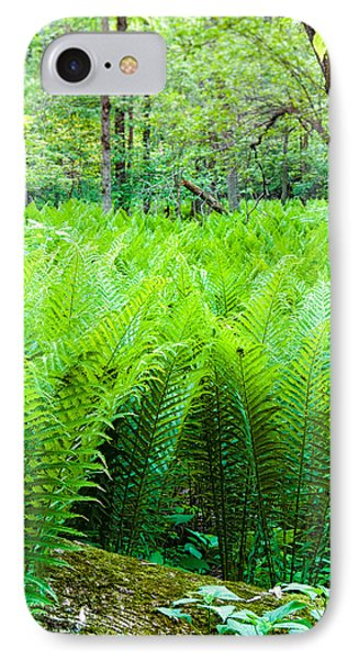 IPhone Case featuring the photograph Forest Ferns   by Lars Lentz