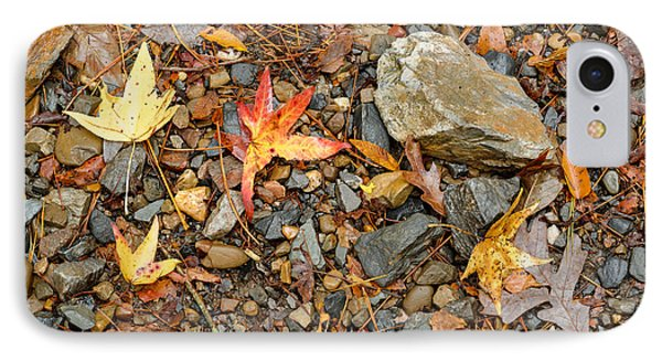 Forest Floor Beaver's Bend State Park Oklahoma IPhone Case