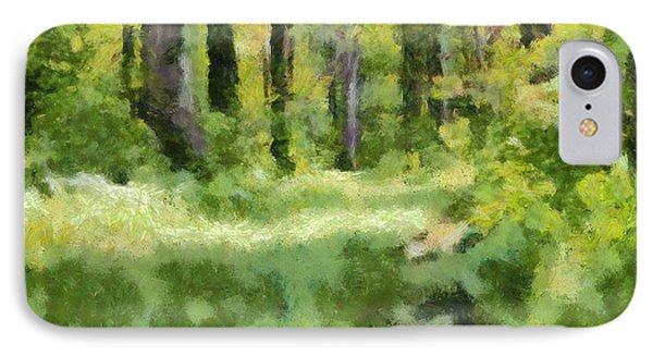 Forest Floor In Summer IPhone Case by Dan Sproul