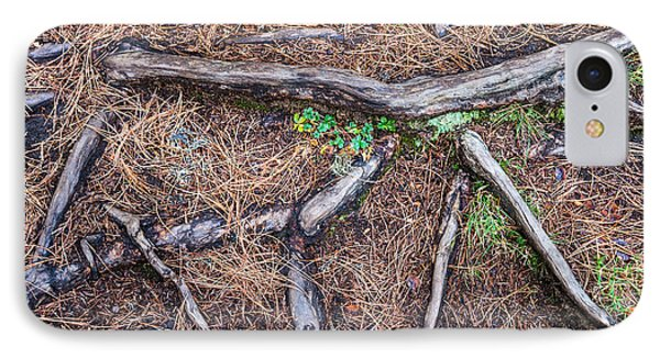 Forest Floor With Tree Roots IPhone Case by Matthias Hauser