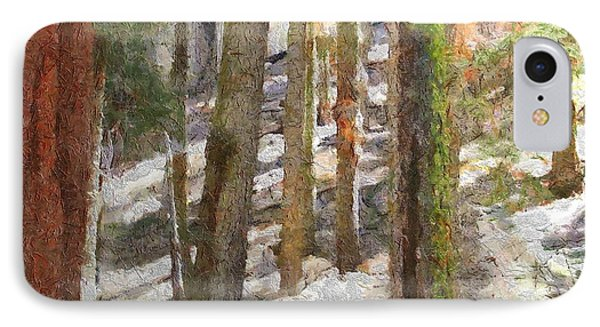 Forest For The Trees Phone Case by Jeff Kolker