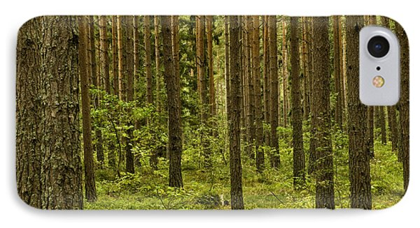 Forest For The Trees IPhone Case by Nancy De Flon