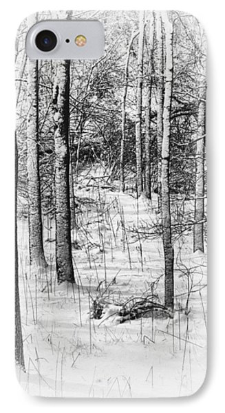 Forest In Winter IPhone Case by Tom Mc Nemar