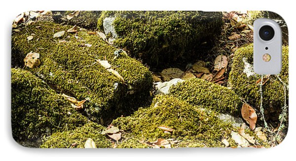 Forest Moss Phone Case by Suzanne Luft