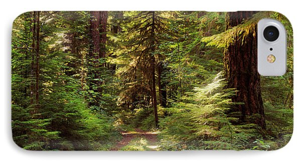 Forest Path 4 IPhone Case by Leland D Howard