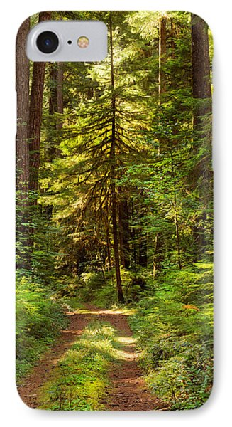 Forest Path 5 IPhone Case by Leland D Howard