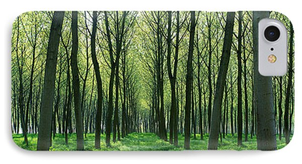 Forest Trail Chateau-thierry France IPhone Case by Panoramic Images