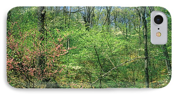Forest, Trail Of Tears, Shawnee IPhone Case by Panoramic Images