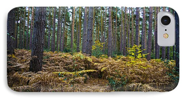 IPhone Case featuring the photograph Forest Trees by Maj Seda