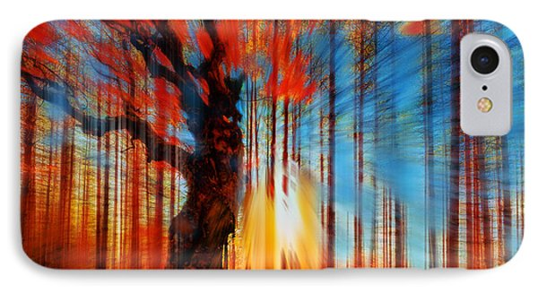 Forrest And Light Phone Case by Tony Rubino