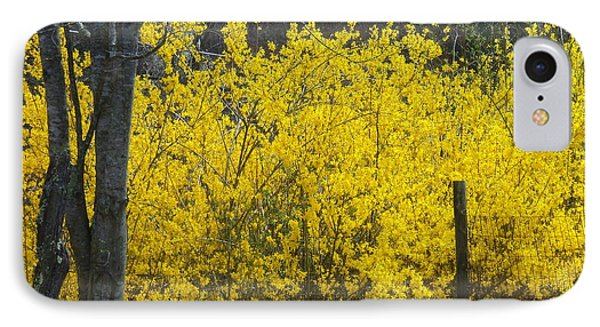 Forsythia IPhone Case