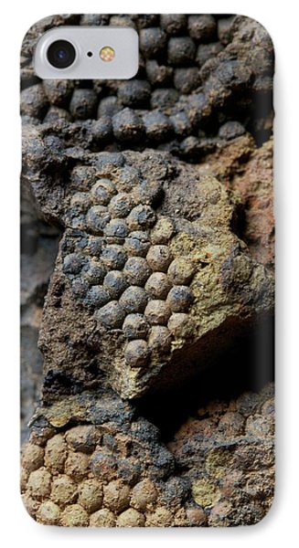Fossil Algae IPhone Case