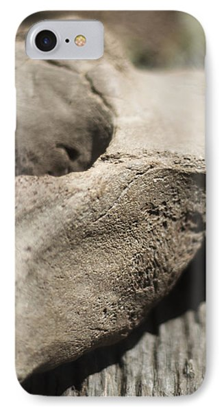 IPhone Case featuring the photograph Fossil Bone With Weathered Wood by Rebecca Sherman