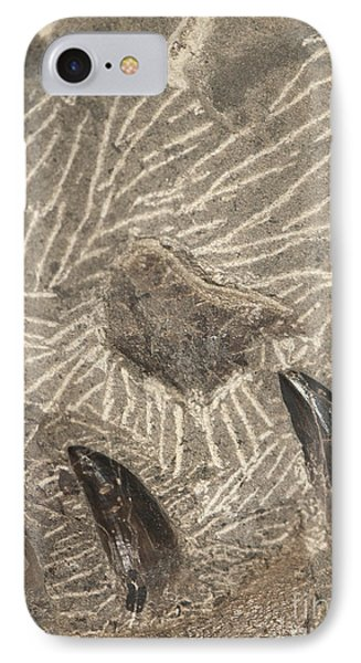 Fossil Shark Teeth Phone Case by Artist and Photographer Laura Wrede