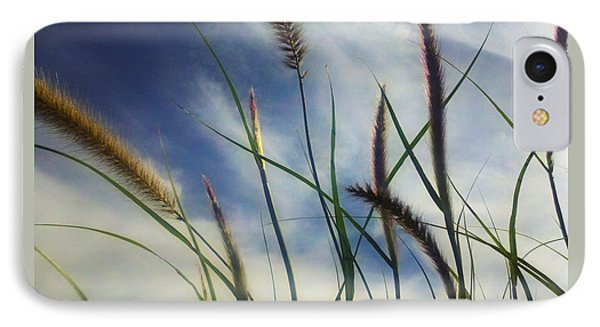 IPhone Case featuring the photograph Fountain Grass by Richard Stephen