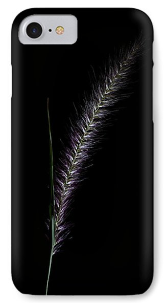 Fountain Grass Spike IPhone Case by Richard Stephen