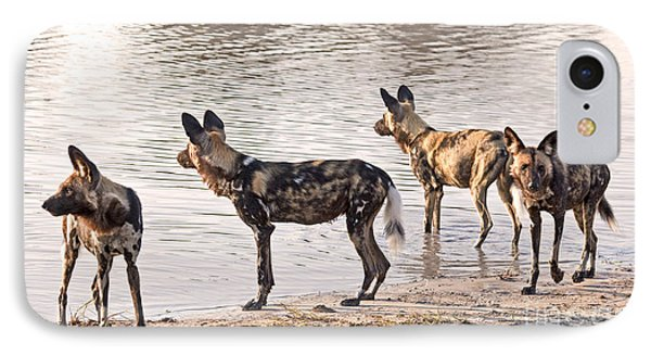 IPhone Case featuring the photograph Four Alert African Wild Dogs by Liz Leyden