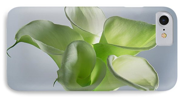 Four Arum Lilies IPhone Case by Norman Hollands
