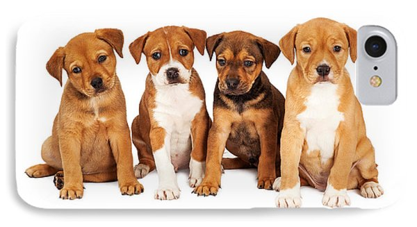 Four Cute Puppies Together IPhone Case by Susan Schmitz