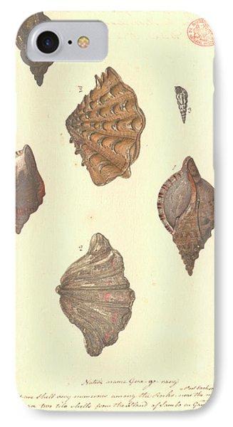 Four Different Molluscs IPhone Case