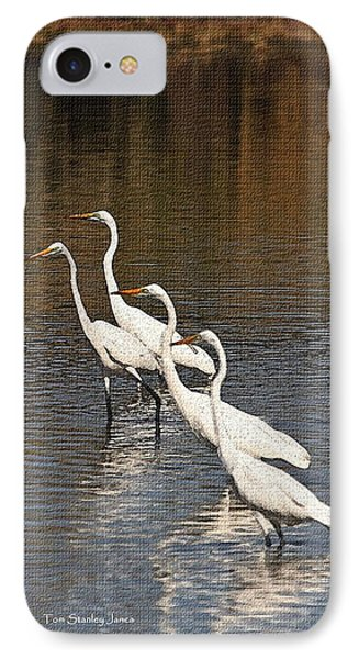 Four Egrets Fishing IPhone Case by Tom Janca