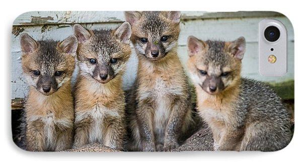 Four Fox Kits Phone Case by Paul Freidlund