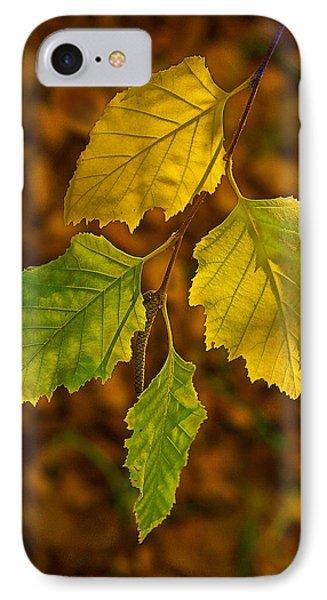 Four Leaves In Light Phone Case by Viktor Savchenko