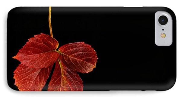 Four Leaves IPhone Case by Marwan Khoury