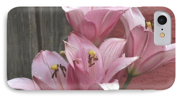 IPhone Case featuring the photograph Four Pink Asiatic Lilies by Rod Ismay