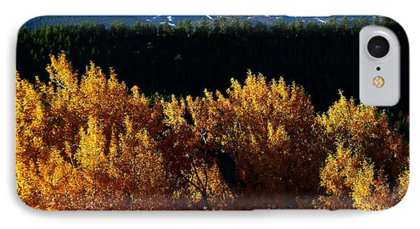 Four Seasons IPhone Case by Steven Reed
