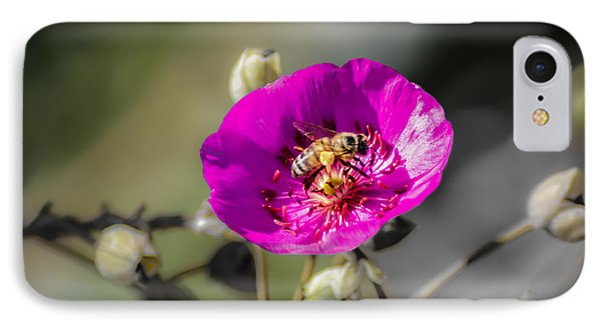 Fower And Bee IPhone Case by Photographic Art by Russel Ray Photos