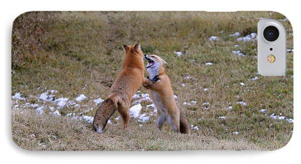 Fox Dance IPhone Case by Sandra Updyke