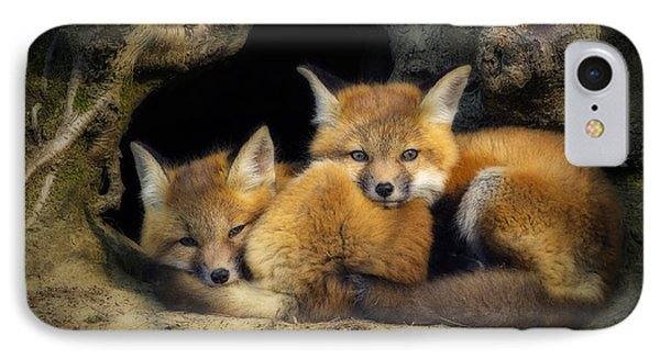 Best Friends - Fox Kits At Rest IPhone Case by John Vose