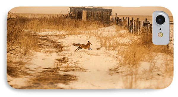 Fox On The Run IPhone Case by Shirley Heier