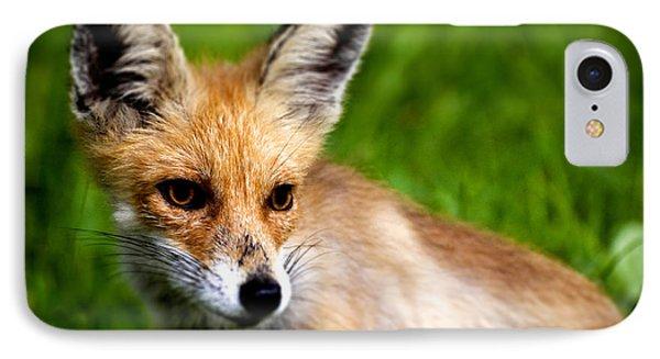Fox Pup Phone Case by Fabrizio Troiani