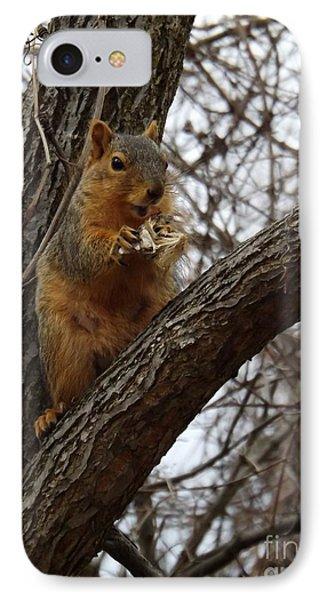 Fox Squirrel 1 Phone Case by Sara  Raber
