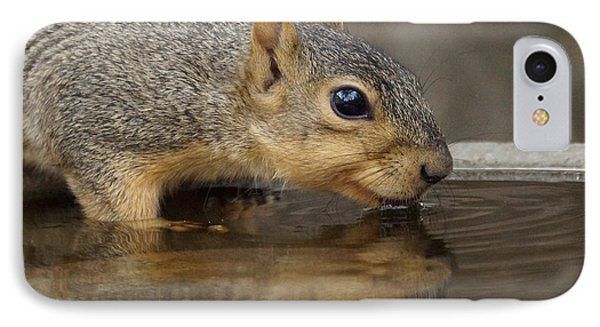 Fox Squirrel Phone Case by Lori Tordsen