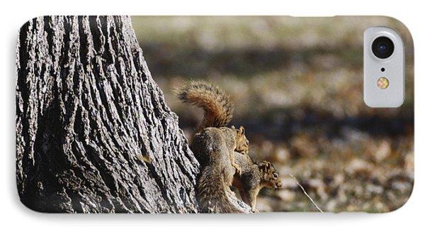 Fox Squirrels Mating IPhone Case