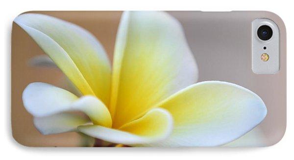 Fragrant Frangipani Flower Phone Case by Sabrina L Ryan