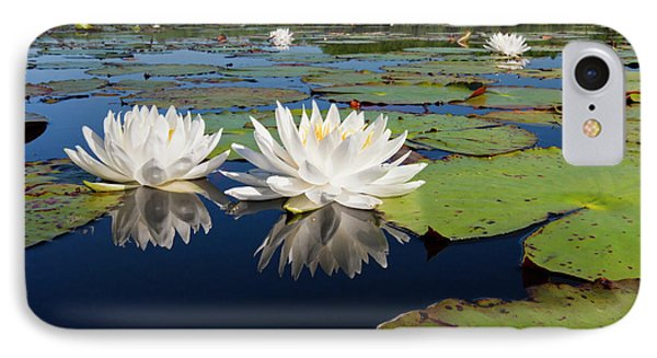 Fragrant Water Lilies On Caddo Lake IPhone Case