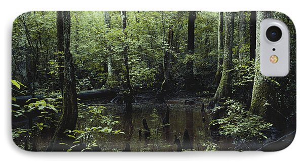 Francis Beidler Forest IPhone Case by Larry Cameron