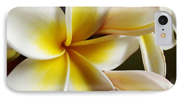 IPhone Case featuring the photograph Frangipani 1 by Trena Mara