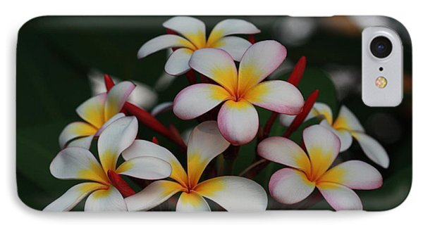 IPhone Case featuring the photograph Frangipani Bouquet by Keith Hawley