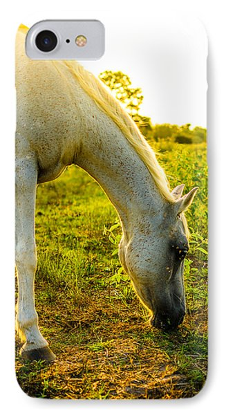 Freckles At Sunset IPhone Case by David Morefield